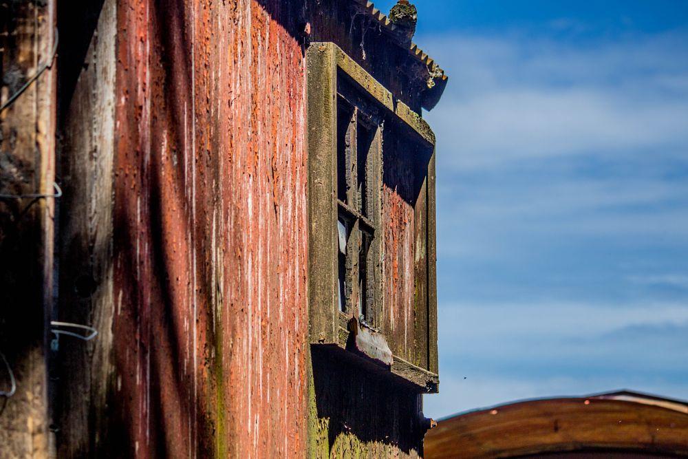 Photo in Rural #tren #abandoned #argentina