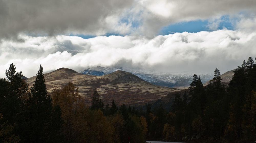 Photo in Nature #snow #rain #october