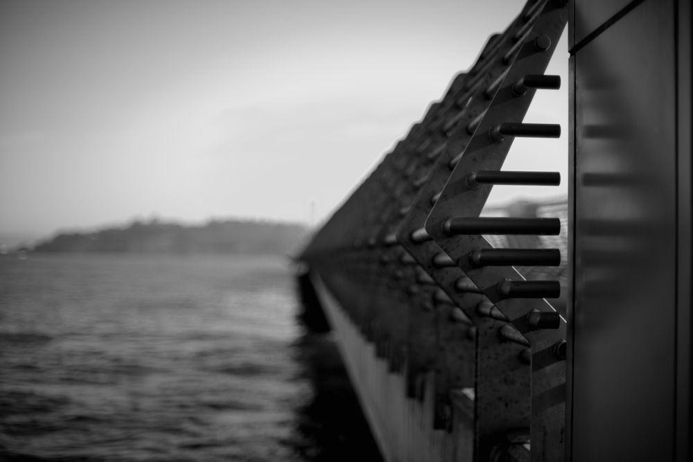 Photo in Random #water #black and white #pier