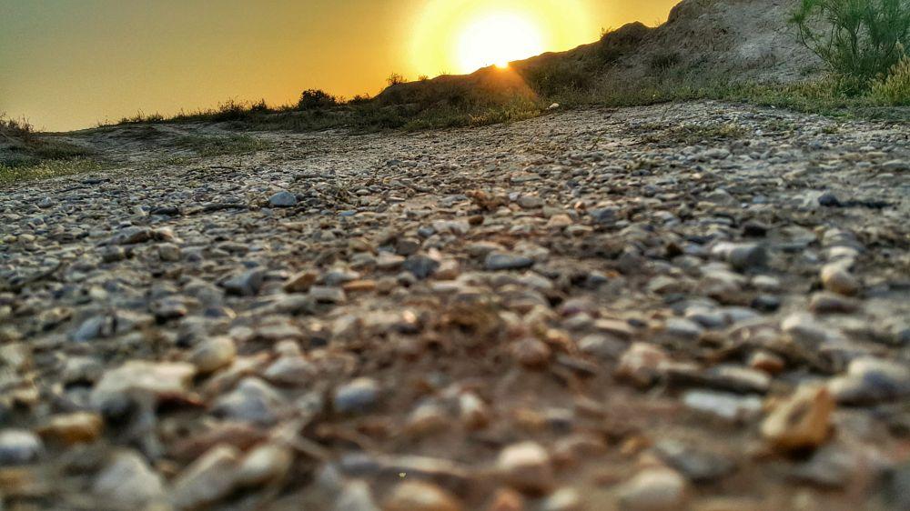 Photo in Random #sunset #sun #shine #life #hunting