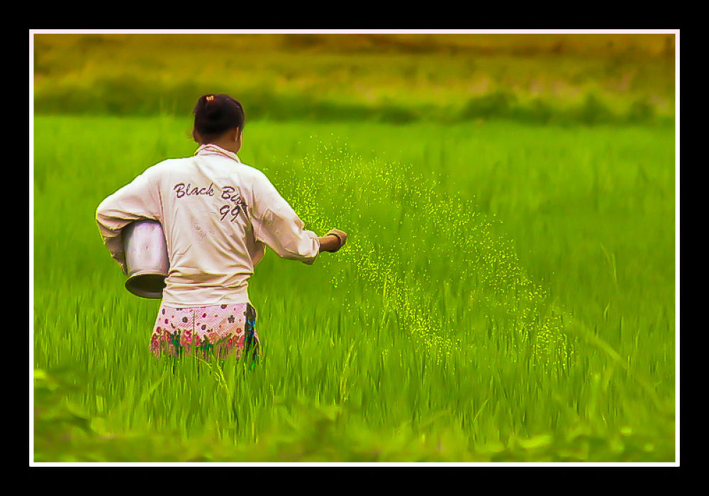 Photo in Random #ramdom #expression #journalism #motivationan #emotive #people #nature #tourist #rural life #landscape