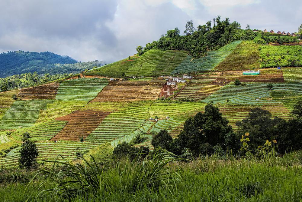 Photo in Landscape #pong yaeng #chiang mai #thailand