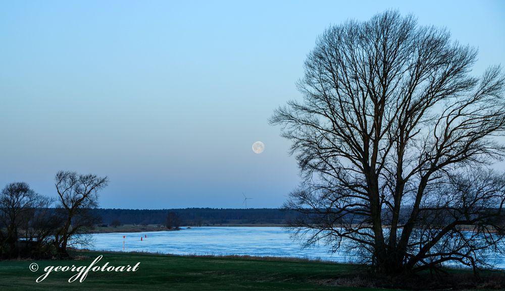 Photo in Landscape #mond #vollmond #fluss #elbe #abend