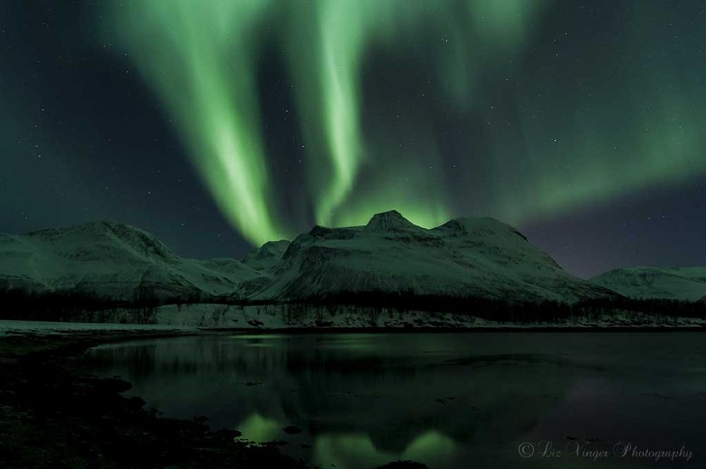Photo in Astrophotography #aurora borealis #northern lights #troms #north norway #winter