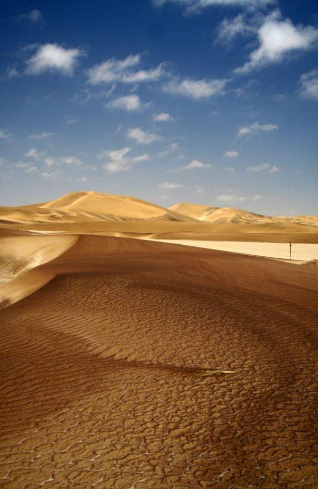 Photo in Nature #dunes #namib dune belt