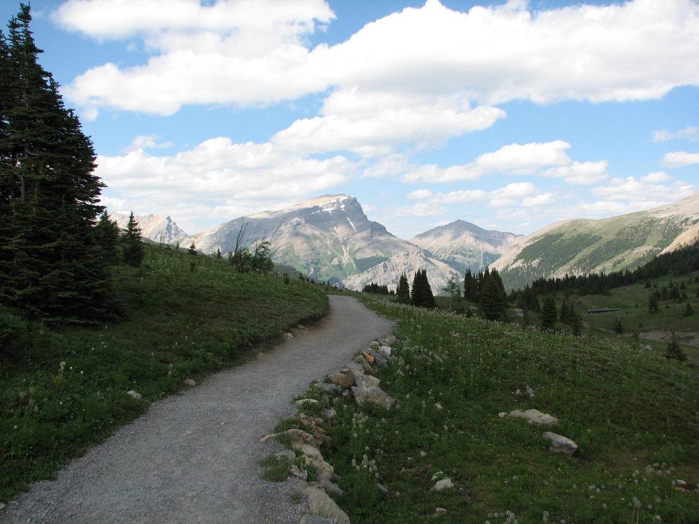 Photo in Landscape #sunshine meadows hike