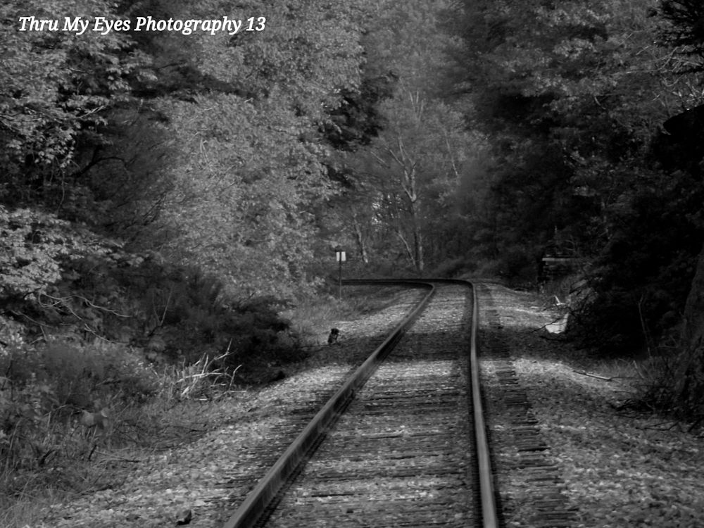 Photo in Random #train tracks #vermont #rural #random