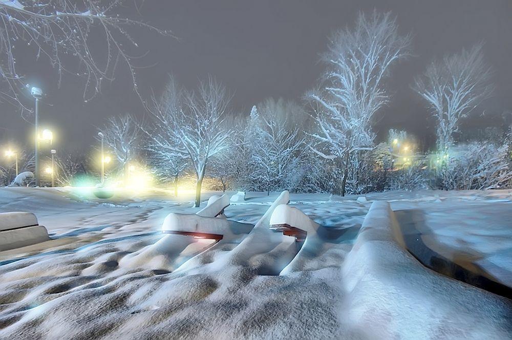 Photo in Landscape #nuit #night #snow #parc #neige #blanc