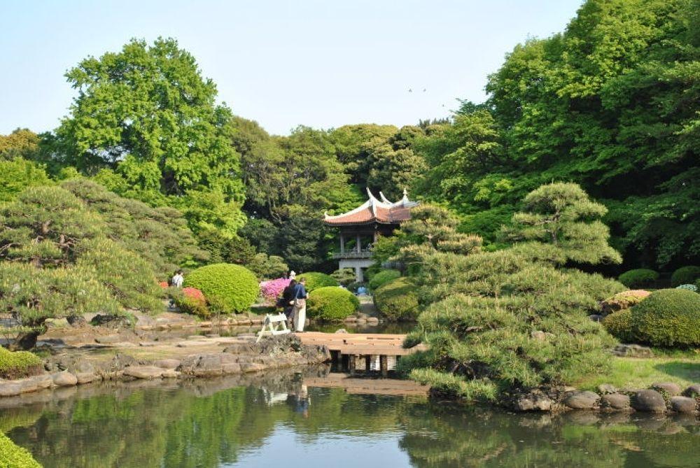 Photo in Random #park #tokyo