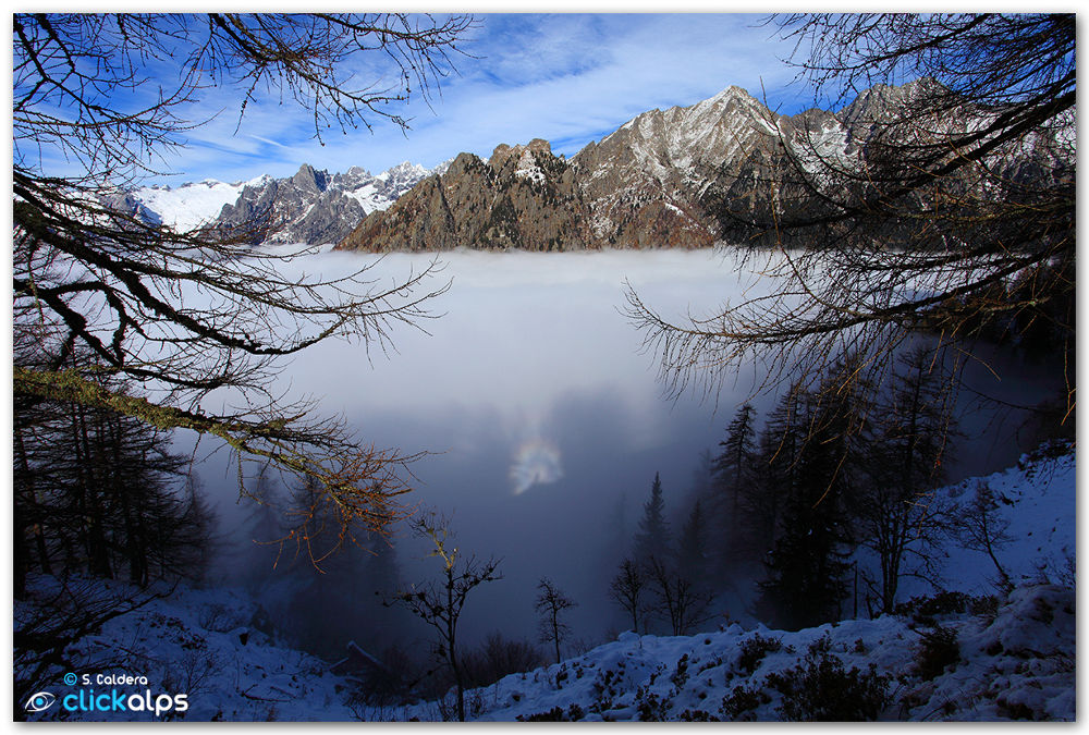 Photo in Landscape #brocken spectre #alps #optical effect #fog