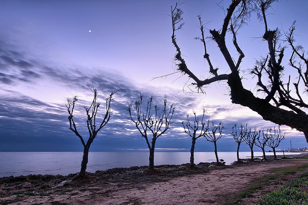 Photo in Landscape #sea #luigi chiriaco