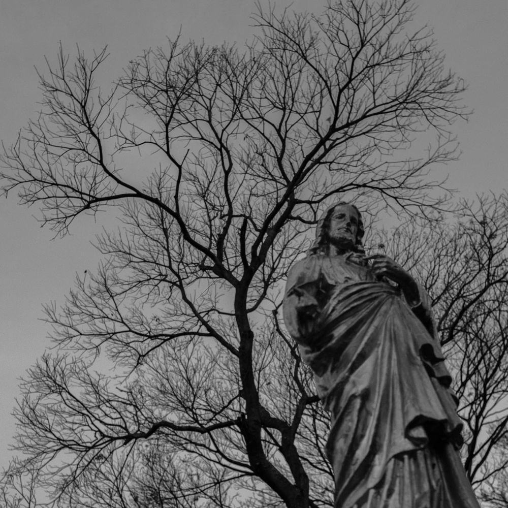 Photo in Black and White #jesus #cemiterio #arvore