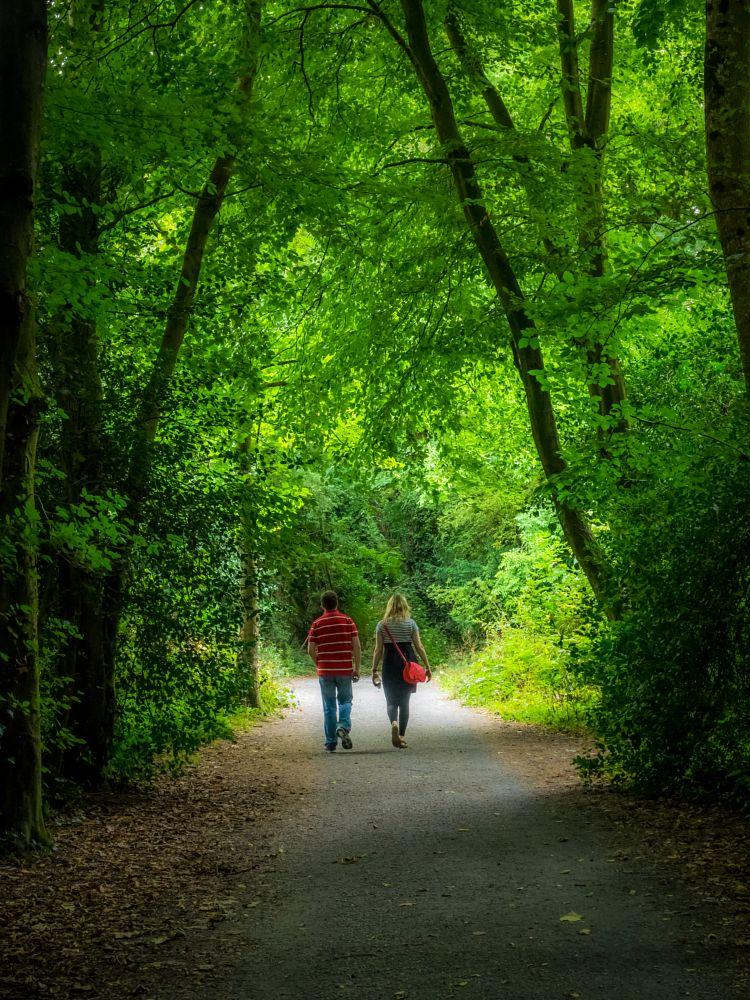 Photo in Random #gardens #people #nature #trees #green #ireland