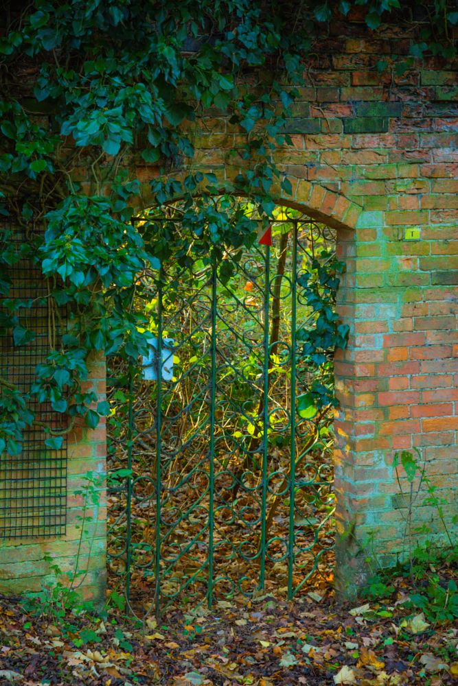 Photo in Random #gate #wall #nature #landscape