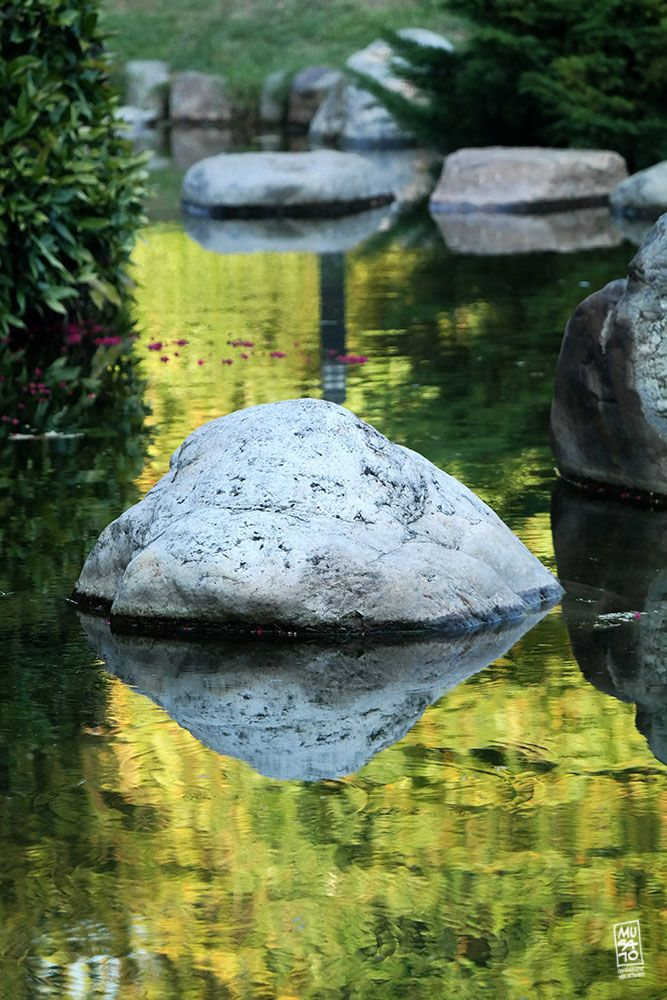 Photo in Nature #reflection #musato #japan garden #istanbul
