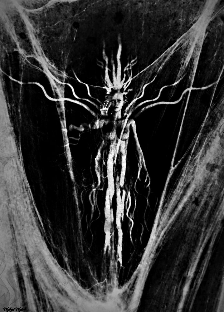 Photo in Black and White #dream #nightmare #horror #ghoul #ghost #digital #art #cobweb #dark #gothic