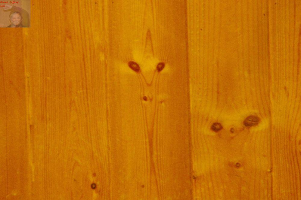 Photo in Interior #wood #grain #panel