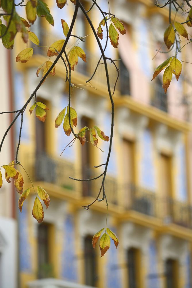 Photo in Abstract #spain #valencia #places #buildings #colours