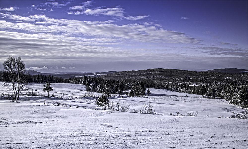 Photo in Nature #ham-nord #canton de l est #quebec