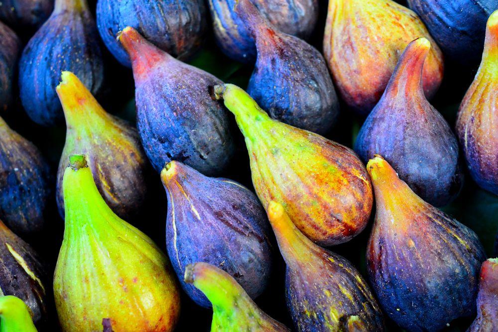 Photo in Still Life #figs #ripe #friuts #youpicfb