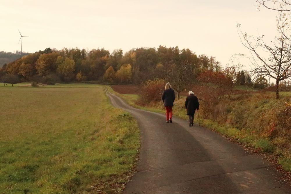 Photo in Landscape #spaziergang #walk #generation #herbst #autumn