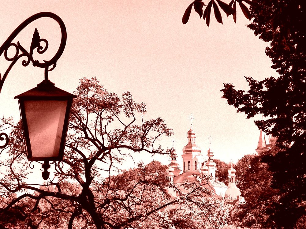 Photo in Landscape #trees #monastery #domes #sky