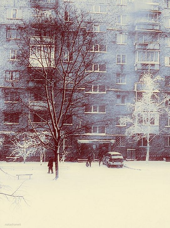 Photo in Street Photography #snow day #tree #housempeoples #car.