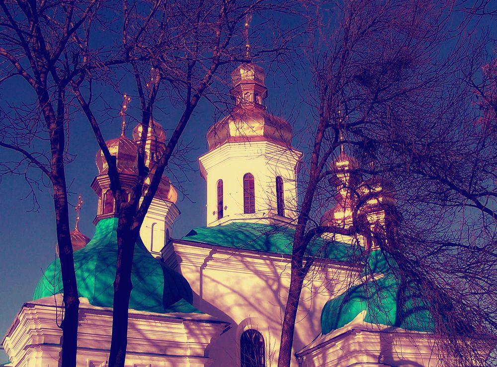 Photo in Fine Art #temple #church #trees #sky #domes