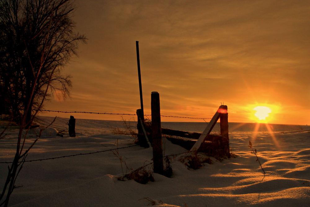 Photo in Rural #winter #snow #sunset #rural #prairie #fence #minnesota #haaland #waconia #golden light