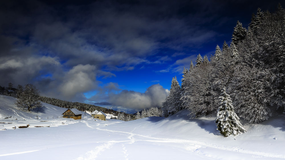 Photo in Landscape #france #savoie #bauges #massif #petit canada #neige #snow #mountain #montagne