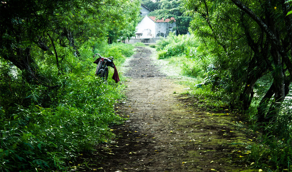 Photo in Nature #nature #landscape #street photography
