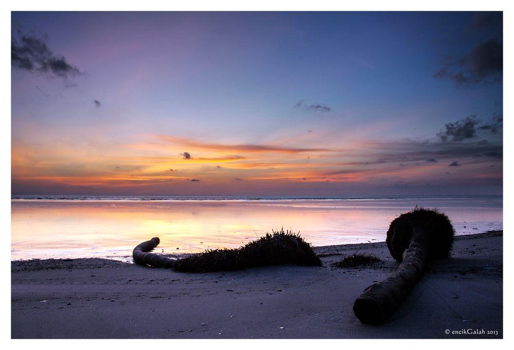 Photo in Landscape #sunset #sunrise #tree #beach