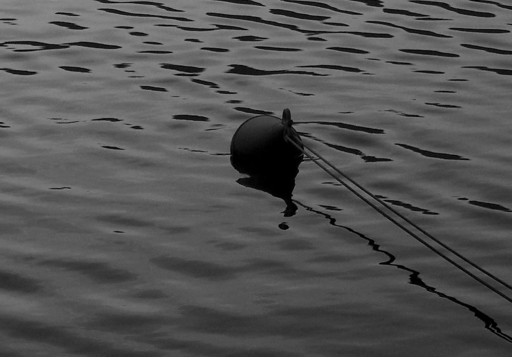 Photo in Black and White #reflections #lines #umbria italy #lake piediluco #buoy