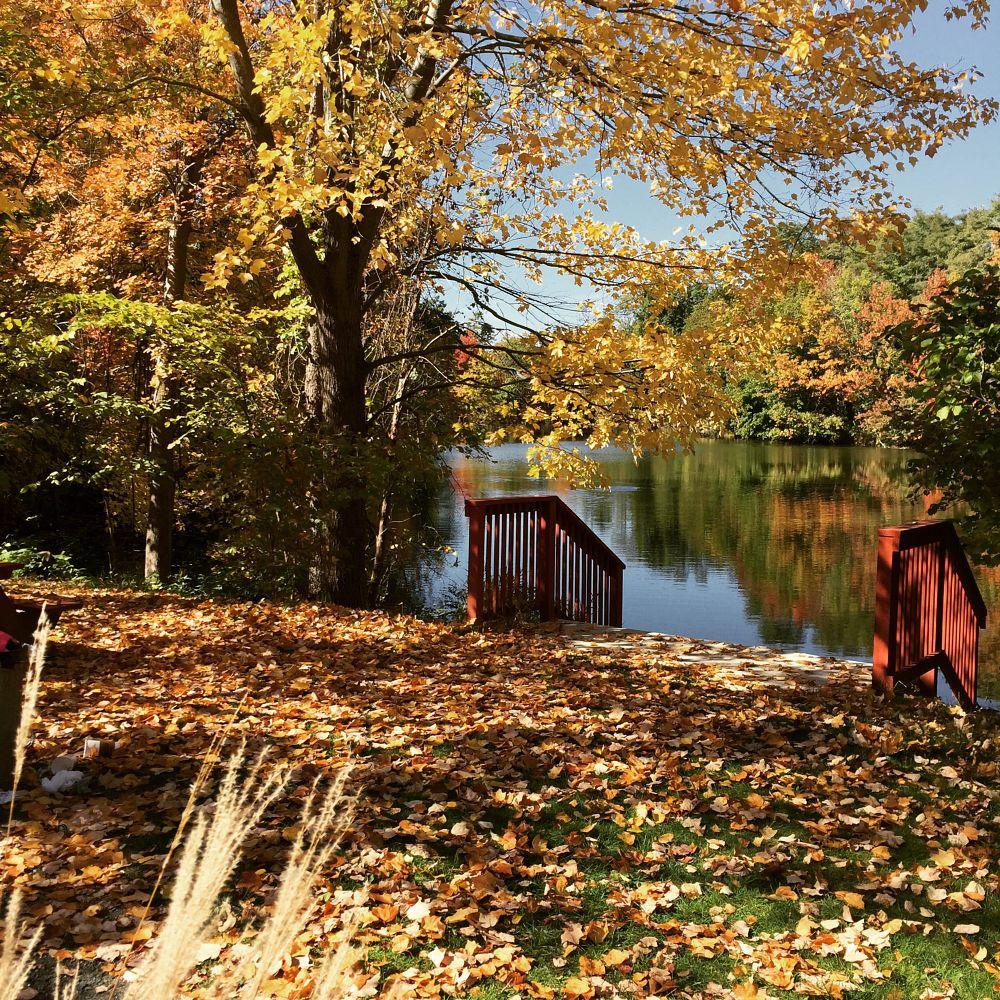 Photo in Landscape #massachsetts #autumn #fallfoliage #autumn colors #lansdcape #new england #leaves #fall season