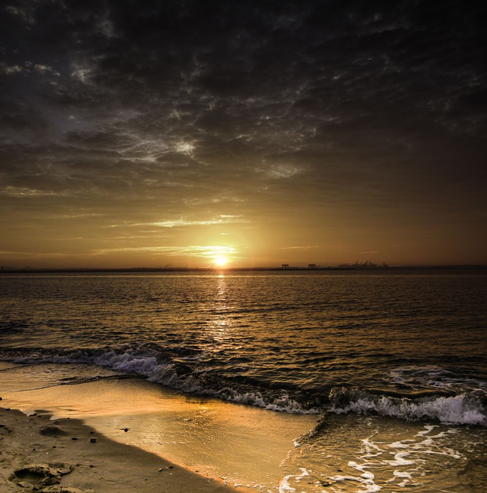 Photo in Sea and Sand #botany bay #sydney #australia #sunrise