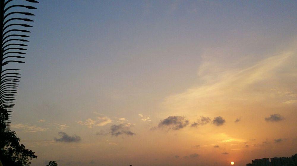 Photo in Random #sunset #v/s #fence