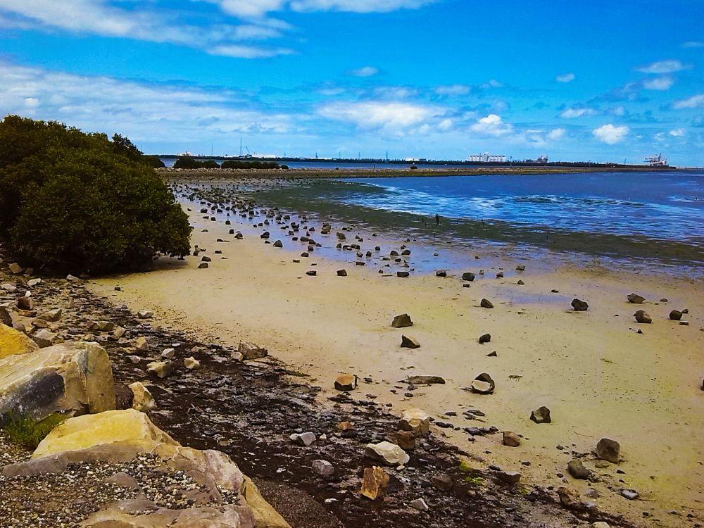 Photo in Sea and Sand #beach #nature #australia