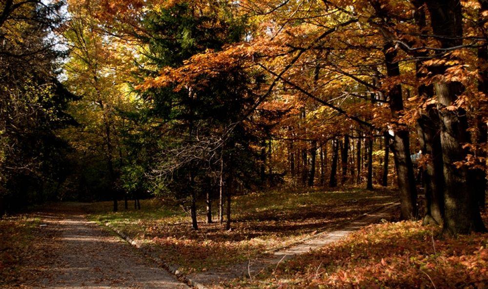 Photo in Random #park #west #sofia
