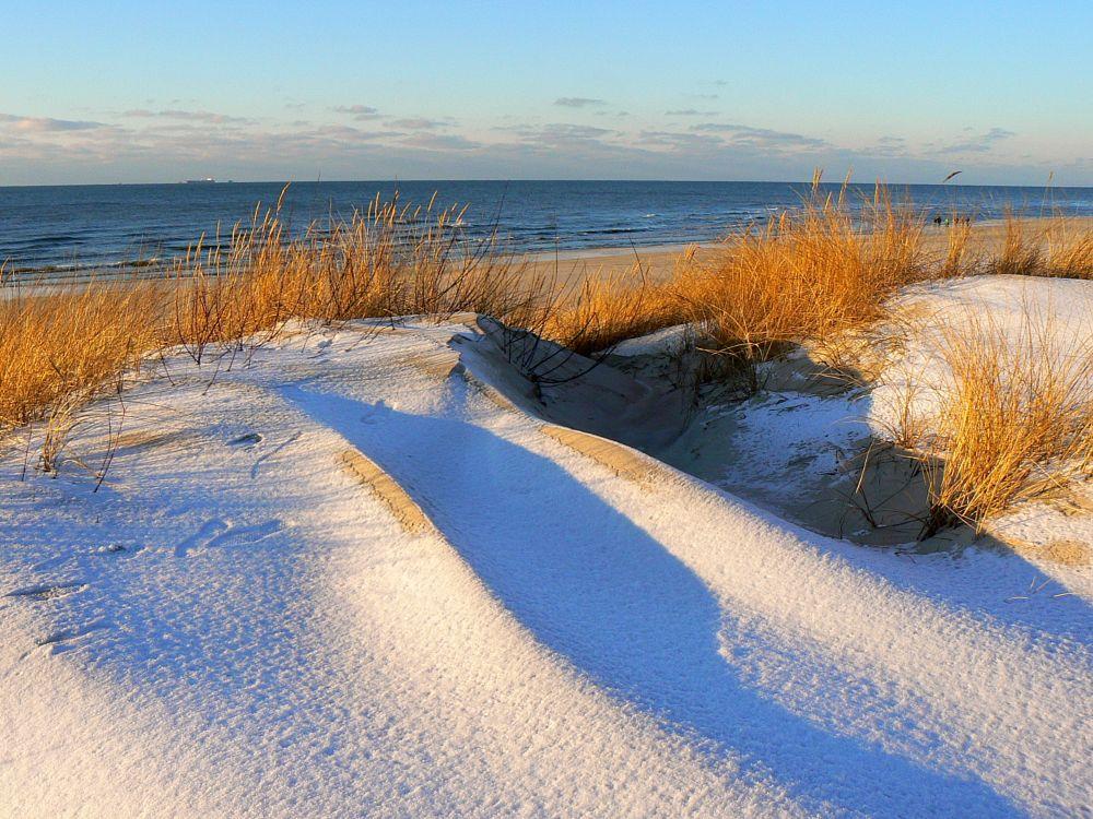 Photo in Landscape #dunes #resort #palanga #lithuania #snow #sand #water #grass #seascape #shore #coast