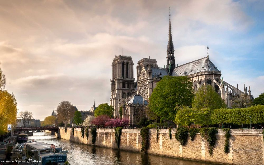 Photo in Architecture #parigi #notre dame #paris #cattedrale #cathedral #sunset #tramonto #color #canal #canale #river #fiume #isola #isle #island