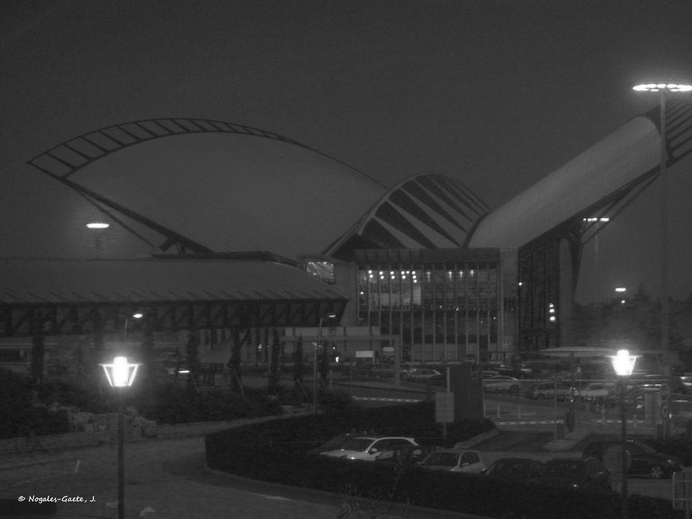 Photo in Black and White #lyon #calatraba