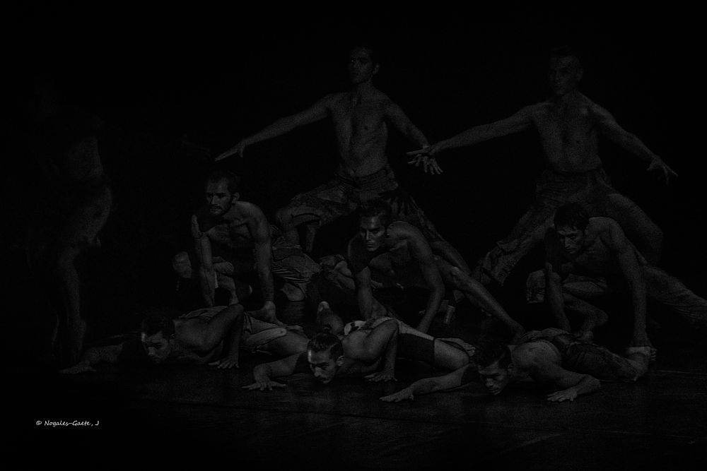 Photo in Black and White #dance #dancer #dancing