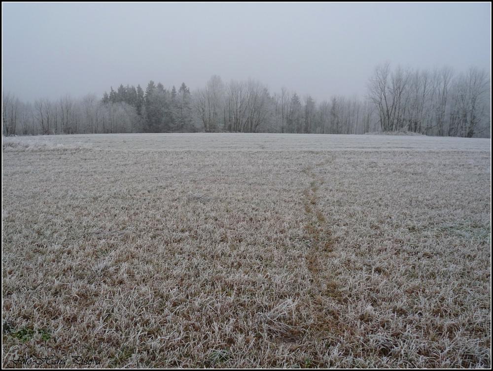 Photo in Landscape #hanaha #čr #škoda #estička