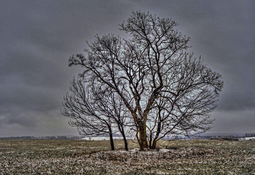 Photo in Landscape #hanaha #čr #landscape