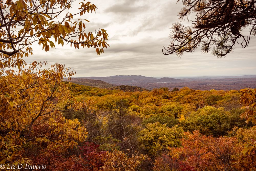 Photo in Random #woods #fall #hiking #new york #catskill mountains #color #clouds