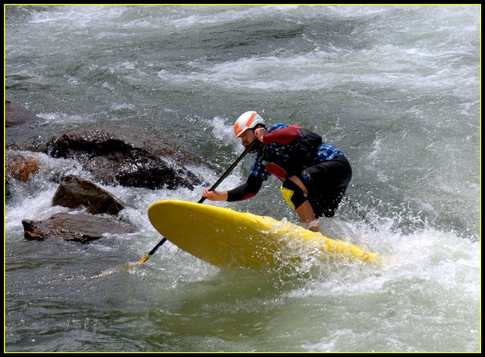 Photo in Sports #action #paddle boarding #white water