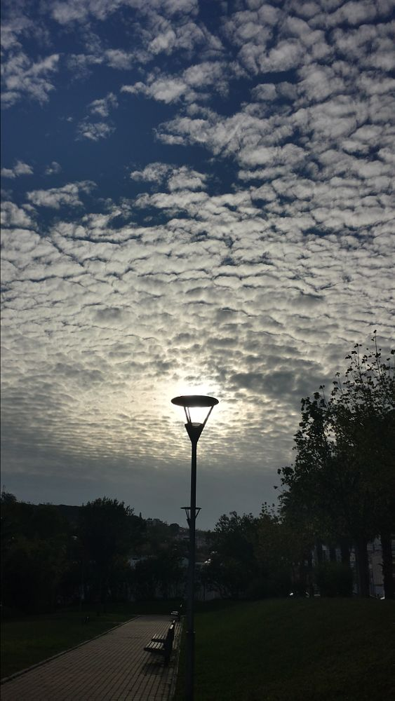 Photo in Fine Art #light #street lamp #sunlight #loures #portugal