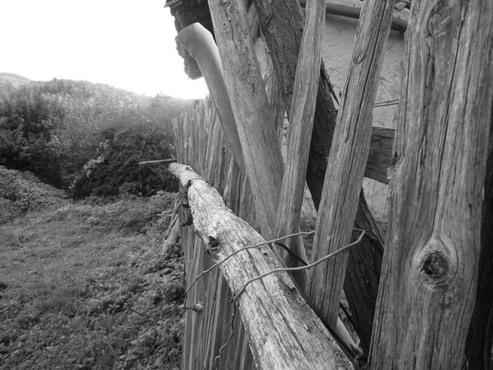 Photo in Black and White #fence #old #b&w