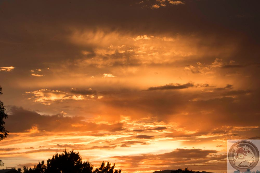 Photo in Landscape #new mexico #sunset #nature #landscape