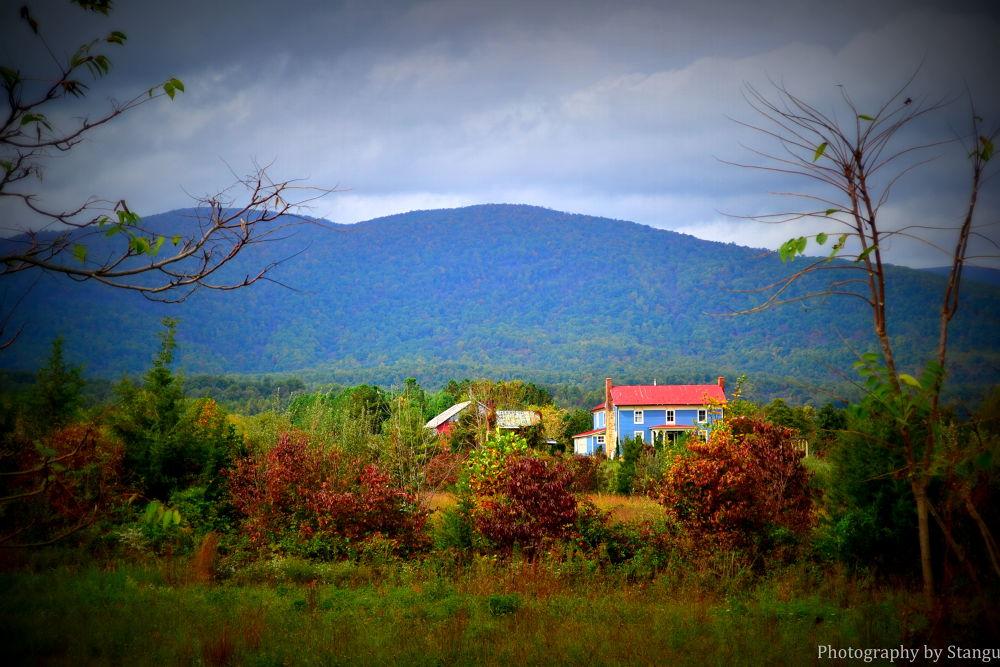 Photo in Landscape #landscape #mountain #virginia #charlottesville #stanardsville #mountain home #still life #love #bright #united states #home #trees